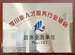 四川省人才服务行业协会团体会员单位